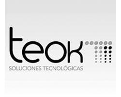 Teok TI Consultoría Tecnologías de Información